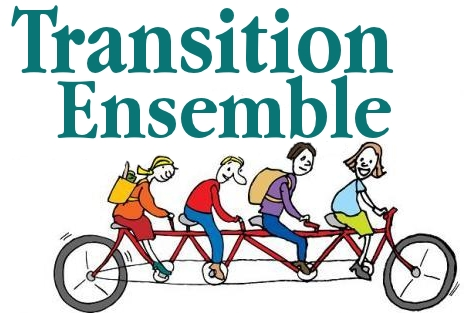 Transition ensemble